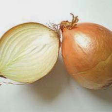 Die Zwiebel als Kulturmodell?
